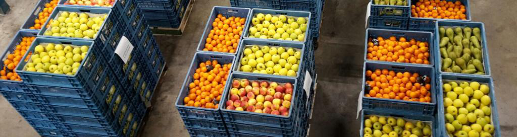 fruit-smalle-banner